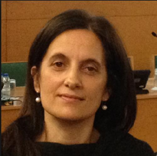 Professor Fernanda Rodrigues